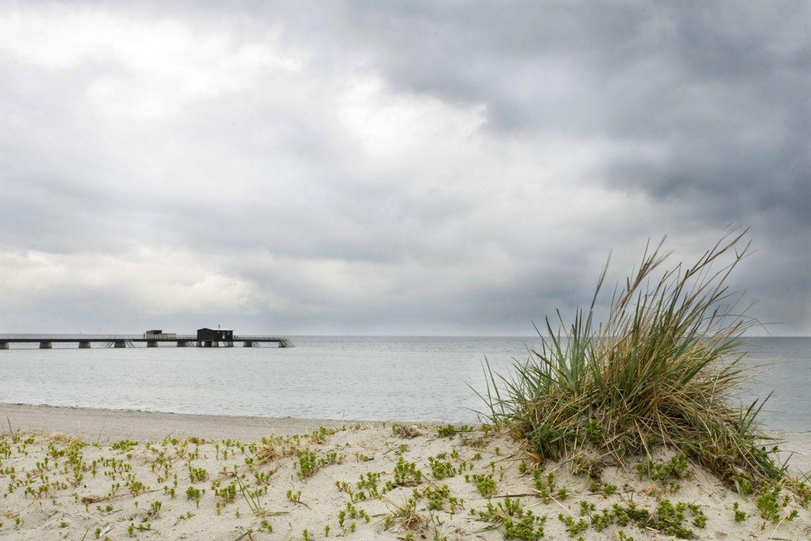 oresund-coast_m