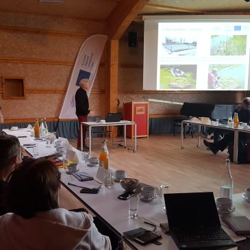Cross-border and cross-project workshop and debates